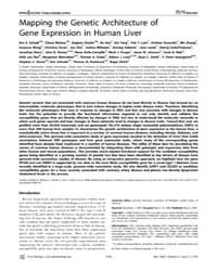 Plos Biology : Mapping the Genetic Archi... by Schadt, Eric E.