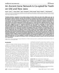 Plos Biology : an Ancient Gene Network i... by Jernvall, Jukka