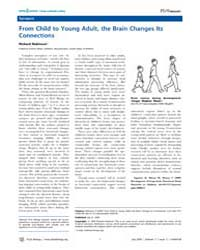 Plos Biology : from Child to Young Adult... by Robinson, Richard