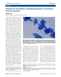 Plos Biology : Change for the Better ; P... by Mair, William