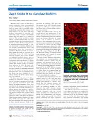 Plos Biology : Zap1 Sticks it to Candida... by Heller, Kira