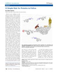 Plos Biology : a Simple Rule for Protein... by Sedwick, Caitlin