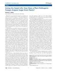 Plos Biology : Living the Sweet Life ; H... by Talbot, Nicholas J.