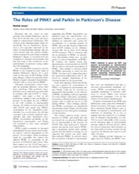 Plos Biology : the Roles of Pink1 and Pa... by Jones, Rachel