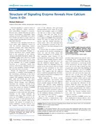 Plos Biology : Structure of Signaling En... by Robinson, Richard