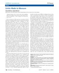 Plos Biology : Limbs Made to Measure, Vo... by Kicheva, Anna