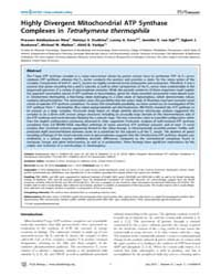 Plos Biology : Highly Divergent Mitochon... by Eisen, Jonathan A.