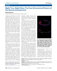 Plos Biology : Right Time, Right Place ;... by Robinson, Richard