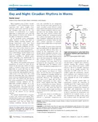 Plos Biology : Day and Night ; Circadian... by Jones, Rachel