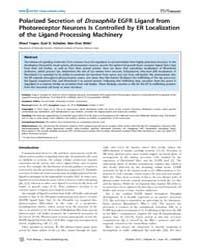 Plos Biology : Polarized Secretion of Dr... by Basler, Konrad
