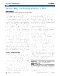 Plos Biology : How and Why Chromosome In... by Kirkpatrick, Mark
