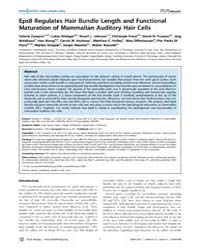 Plos Biology : Eps8 Regulates Hair Bundl... by Groves, Andy