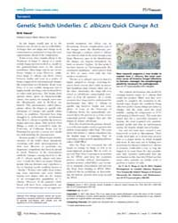 Plos Biology : Genetic Switch Underlies ... by Public Library of Science (Plos)