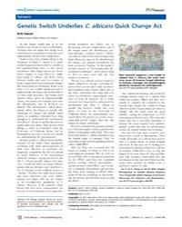 Plos Biology : Genetic Switch Underlies ... by Public Library of Science (Plos)