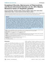 Plos Biology : Exceptional Diversity, Ma... by S. Schneider, David