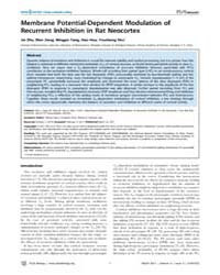 Plos Biology : Membrane Potential-depend... by Bacci, Alberto
