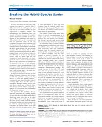 Plos Biology : Breaking the Hybrid–speci... by Public Library of Science (Plos)