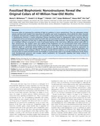 Plos Biology : Fossilized Biophotonic Na... by Michael J. Benton