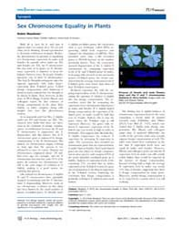 Plos Biology : Sex Chromosome Equality i... by Public Library of Science (Plos)