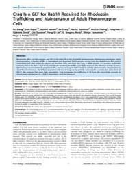 Plos Biology : Crag is a Gef for Rab11 R... by Glover, David M.