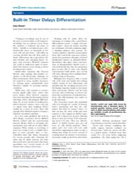 Plos Biology : Built-in Timer Delays Dif... by Public Library of Science (Plos)
