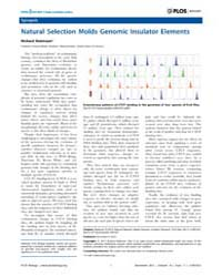 Plos Biology : Natural Selection Molds G... by Walter, Peter