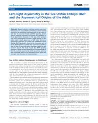 Plos Biology : Left-right Asymmetry in t... by Public Library of Science (Plos)
