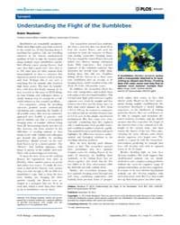 Plos Biology : Understanding the Flight ... by Goodell, Margaret A.