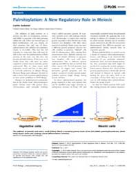 Plos Biology : Palmitoylation ; a New Re... by Sedwick, Caitlin