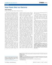 Plos Biology : How Plants Shut Out Bacte... by Meadows, Robin
