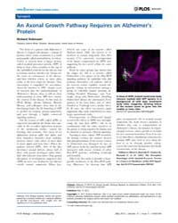 Plos Biology : an Axonal Growth Pathway ... by Robinson, Richard