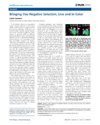 Plos Biology : Bringing You Negative Sel... by Sedwick, Caitlin