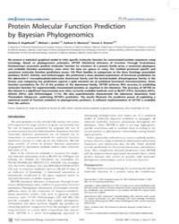 Plos Computational Biology : Protein Mol... by Eisen, Jonathan