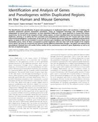 Plos Computational Biology : Identificat... by Guigo, Roderic