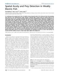 Plos Computational Biology : Spatial Acu... by Friston, Karl, J.
