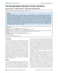 Plos Computational Biology : the Morphol... by Friston, Karl, J.