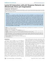 Plos Computational Biology : Lysine120 I... by Pan, Yongping