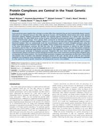 Plos Computational Biology : Protein Com... by Michaut, Magali