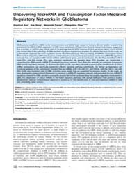 Plos Computational Biology : Shaping the... by Vato, Alessandro