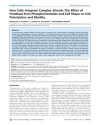 Plos Computational Biology : How Cells I... by Maree, Athanasius F. M.