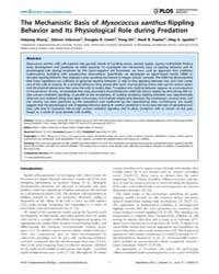 Plos Computational Biology : the Mechani... by Zhang, Haiyang