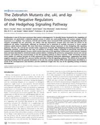 Plos Genetics : the Zebrafish Mutants Dr... by Mullins, Mary