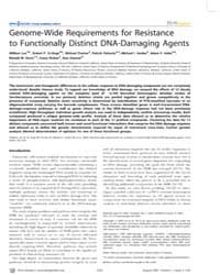 Plos Genetics : Genome-wide Requirements... by Snyder, Michael