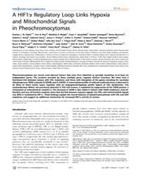 Plos Genetics : a Hif1Α Regulatory Loop ... by Frankel, Wayne N.