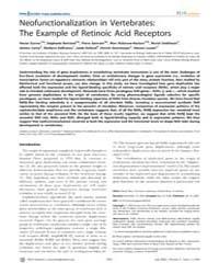 Plos Genetics : Neofunctionalization in ... by Stern, David