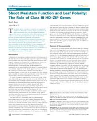 Plos Genetics : Shoot Meristem Function ... by Katsanis, Nicholas