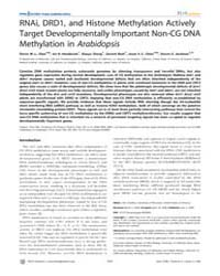 Plos Genetics : Rnai, Drd1, and Histone ... by Doebley, John