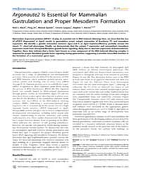 Plos Genetics : Argonaute2 is Essential ... by McManus, Michael