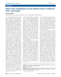 Plos Genetics : News from Arabidopsison ... by White, Charles I.