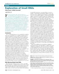 Plos Genetics : Exploration of Small Rna... by Frankel, Wayne N.